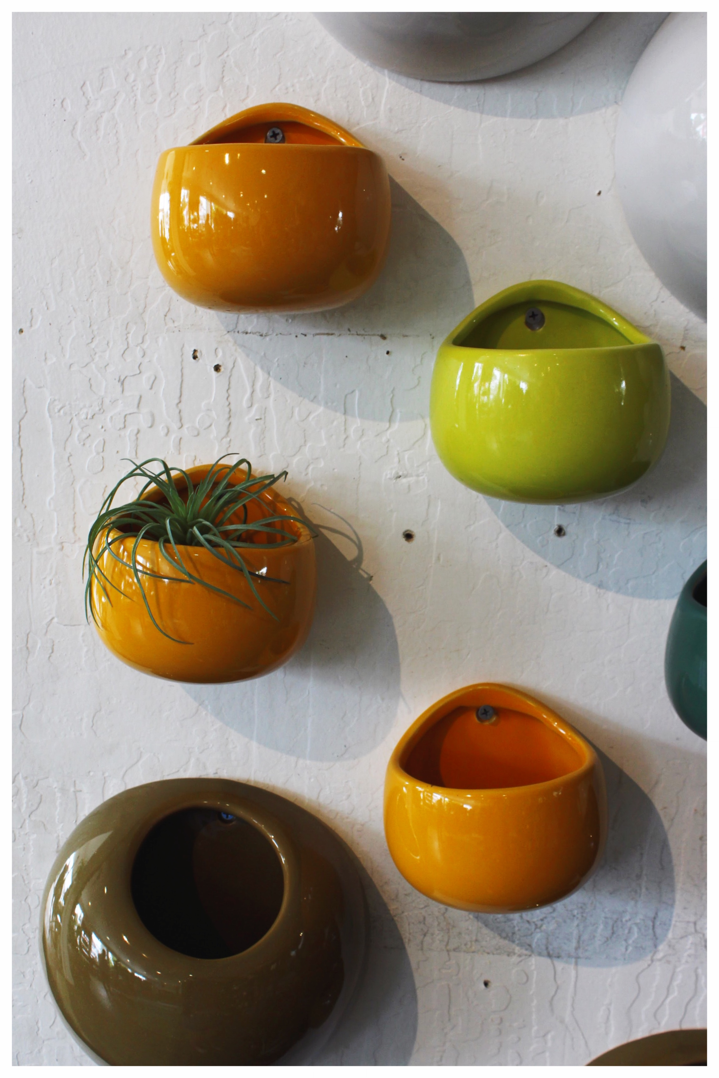 Magnetic Air Plant Vases