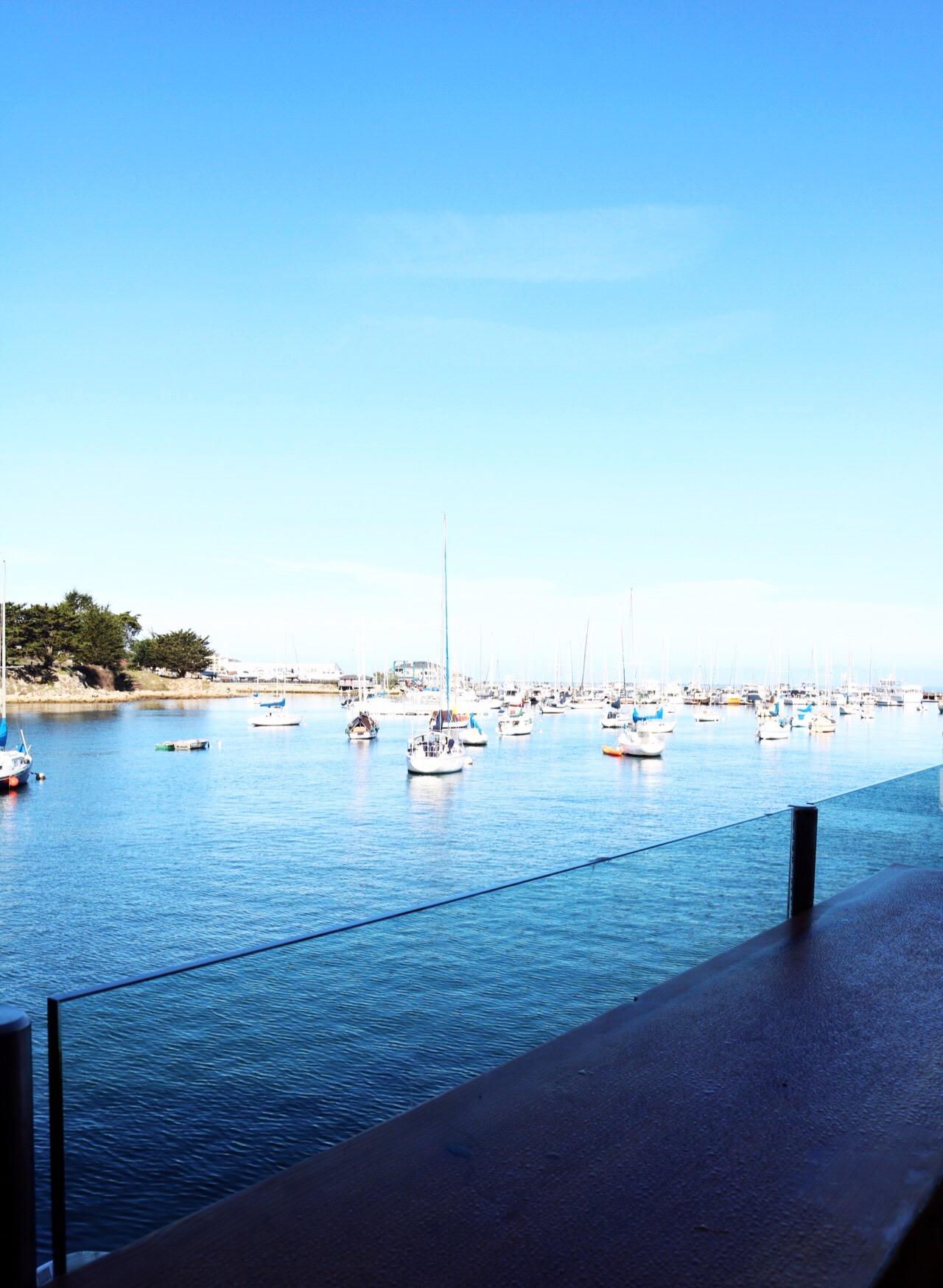 Monterey Beach Ocean Views