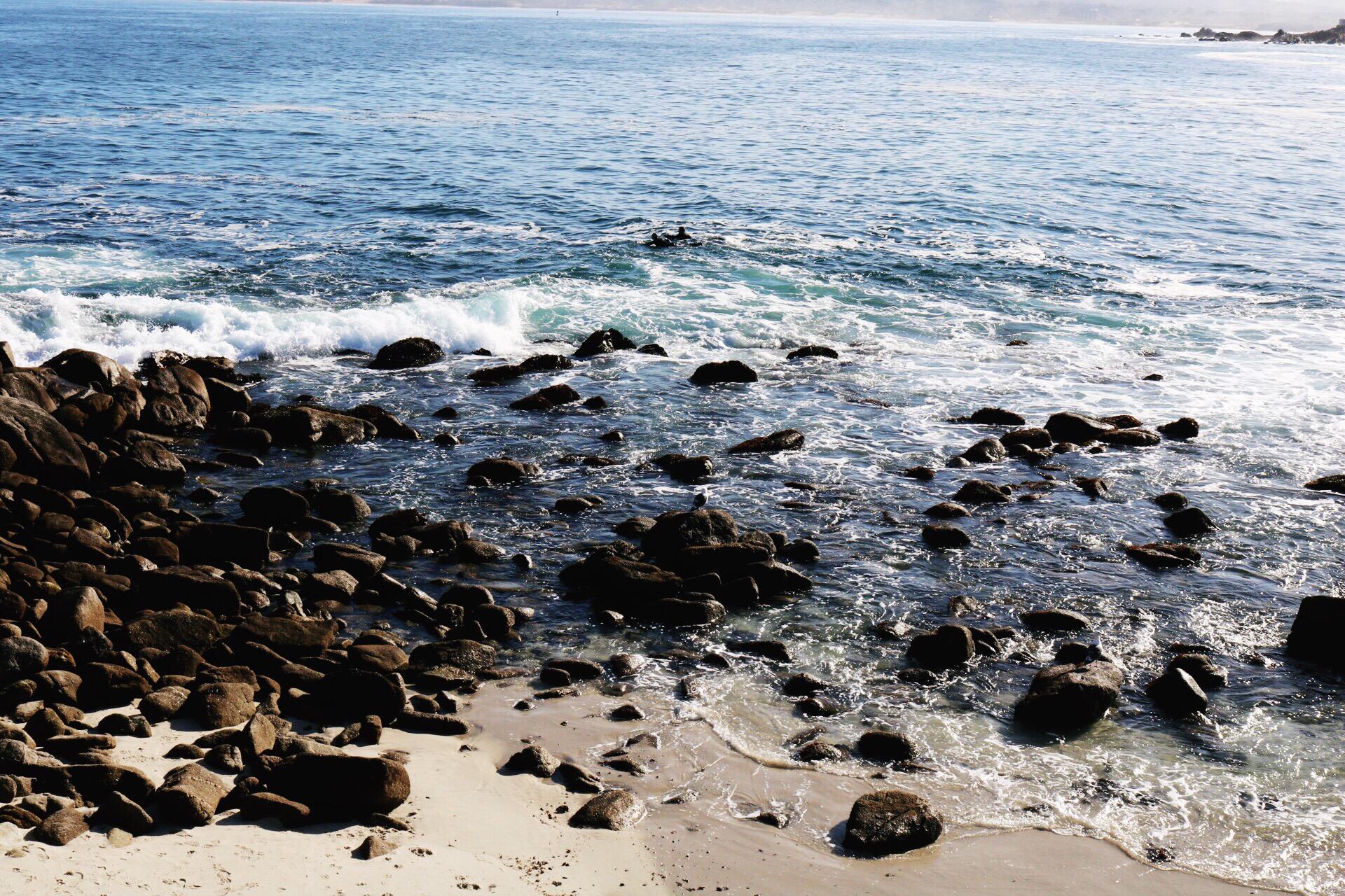 Ocean Beach Day Monterey Beach
