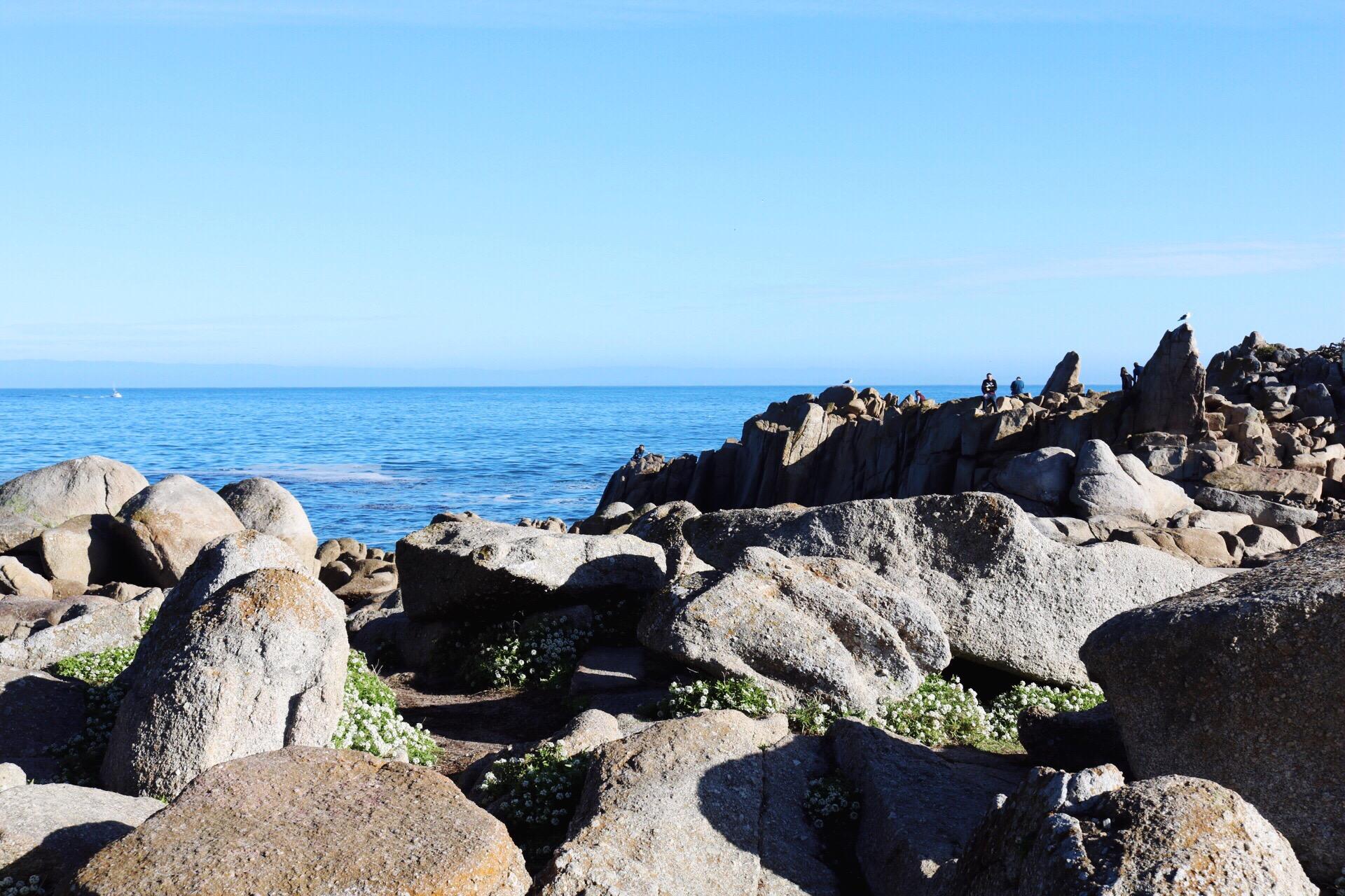 Lovers Point Park Monterey Beach California Beach Day