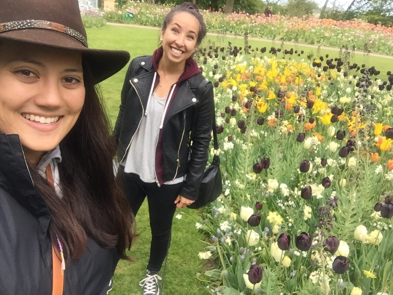 Hey! Rose and Emily reporting from the Netherlands!