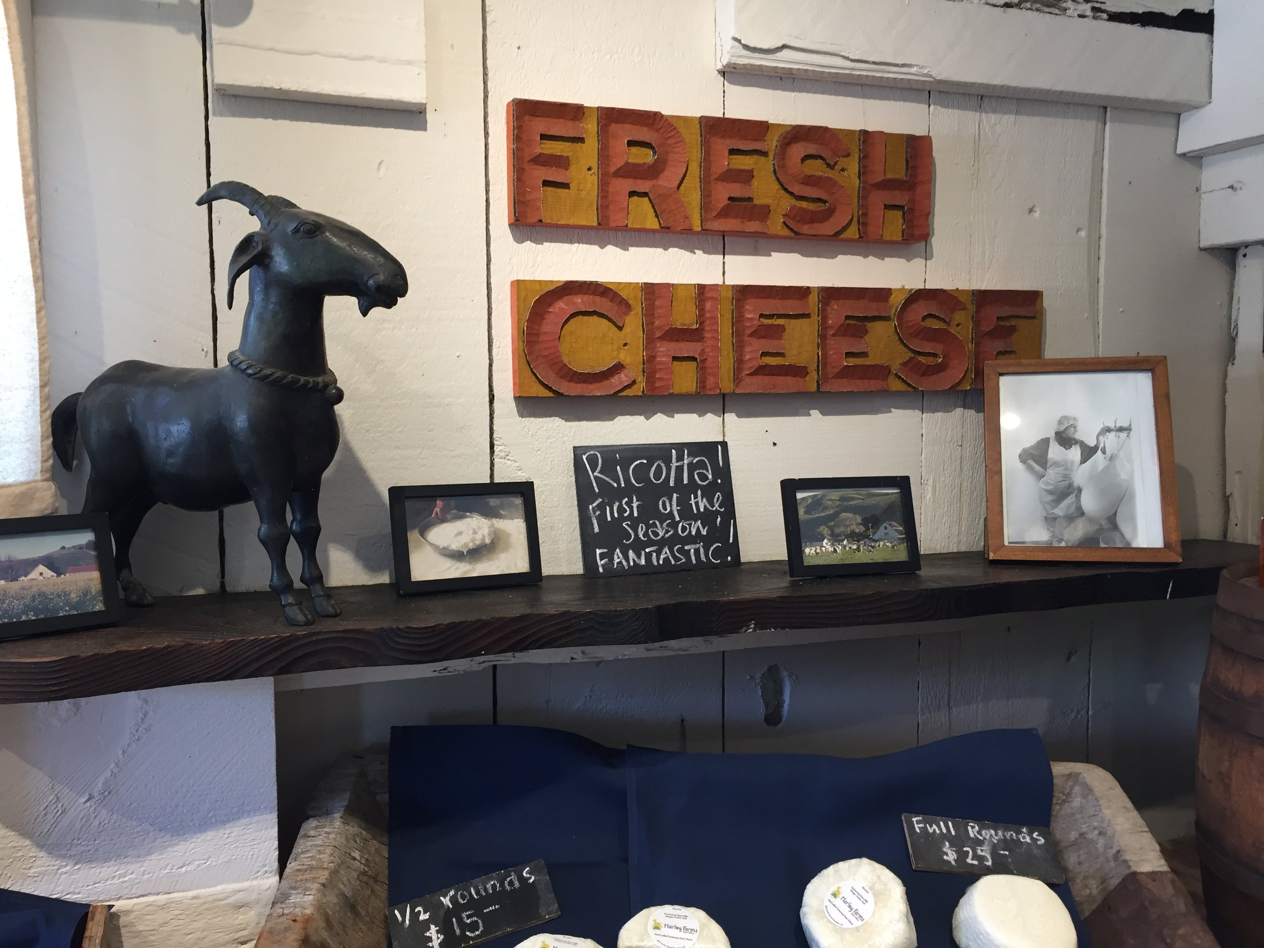 Goat cheese.JPG