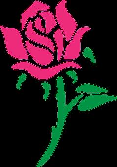 rose-54e1d2424c_340.png