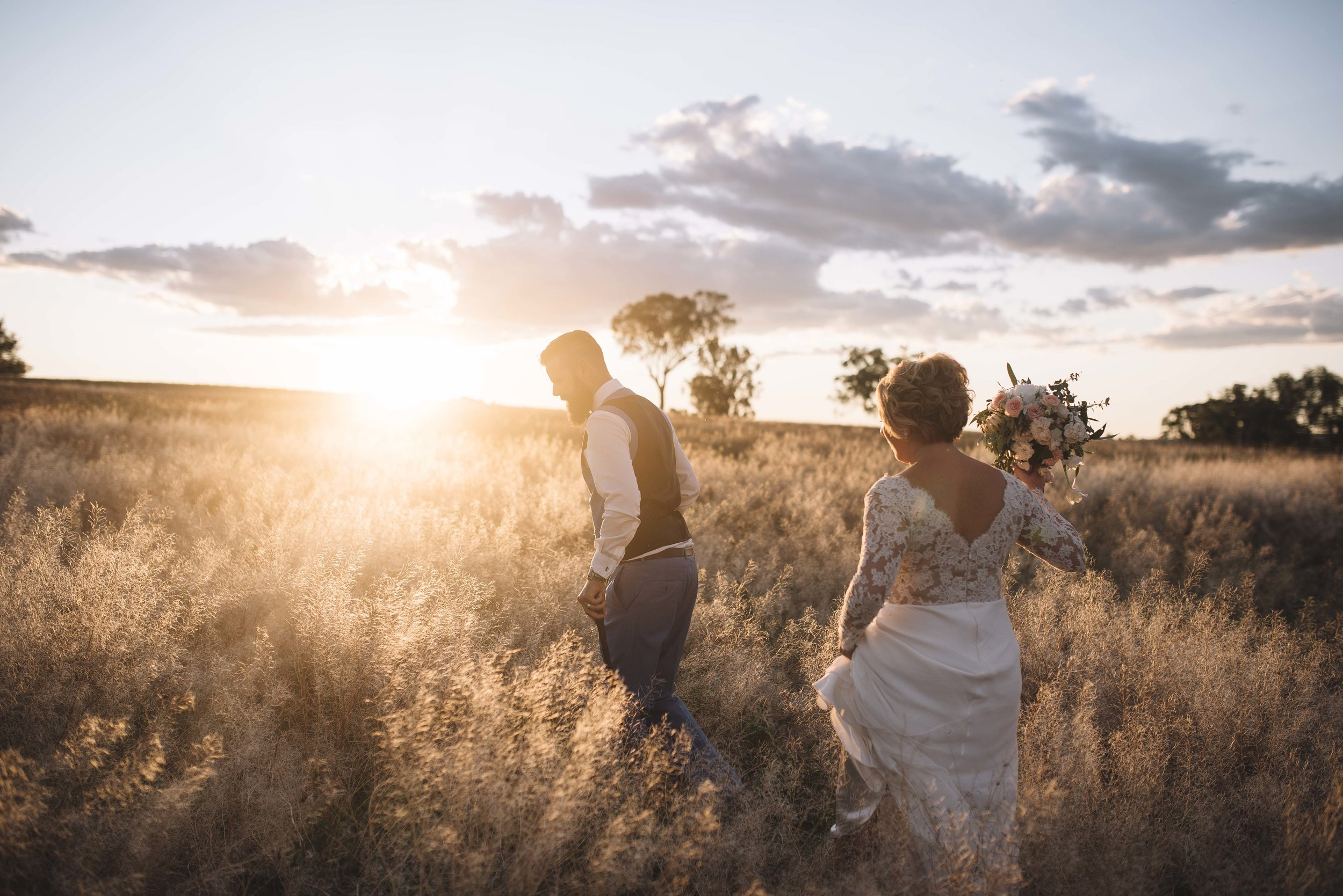 Golden fields of grasses are a common site in the Hunter Valley