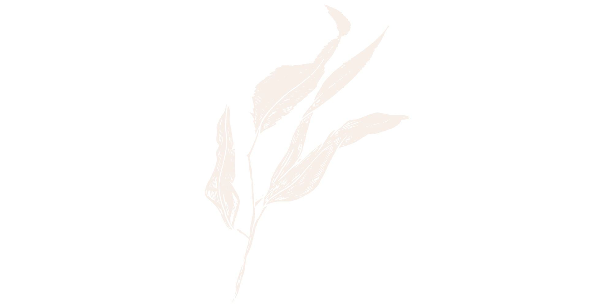 Film-and-foliage-gumleaf-cream.png