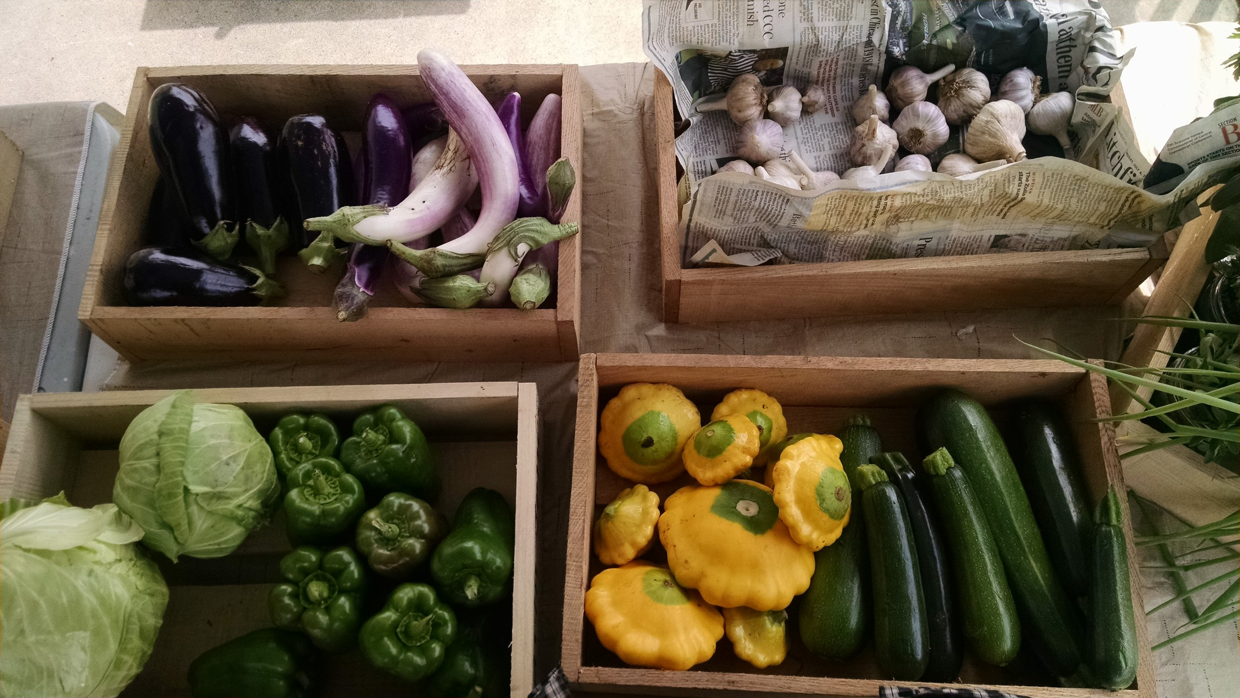 IMG_20170806_142501124 Farm market 1.jpg