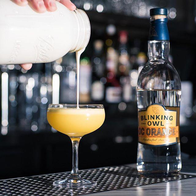 "Cream of the crop 🍊🥛 . Orange ""Owl"" Julius - Blinking Owl OC Orange Vodka, Reagan's Bitters, Lemon, Peach Liqueur, and Semi-Sweet Whip . #cocktail #cocktails #cocktailhour #craft #crafted #craftedcocktails #instadrink #liquorgram #cocktailsocial #cheers #liquor #happyhour #drinks #mixology #dtsa #santaana #oc #orangecounty #blinkingowl #orangejulius"