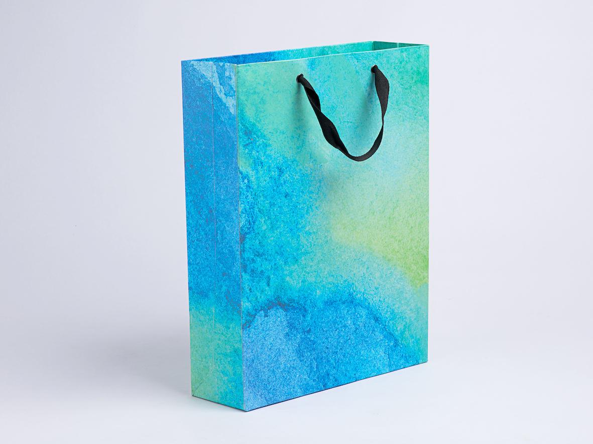 Water Colour Gift Bag.JPG