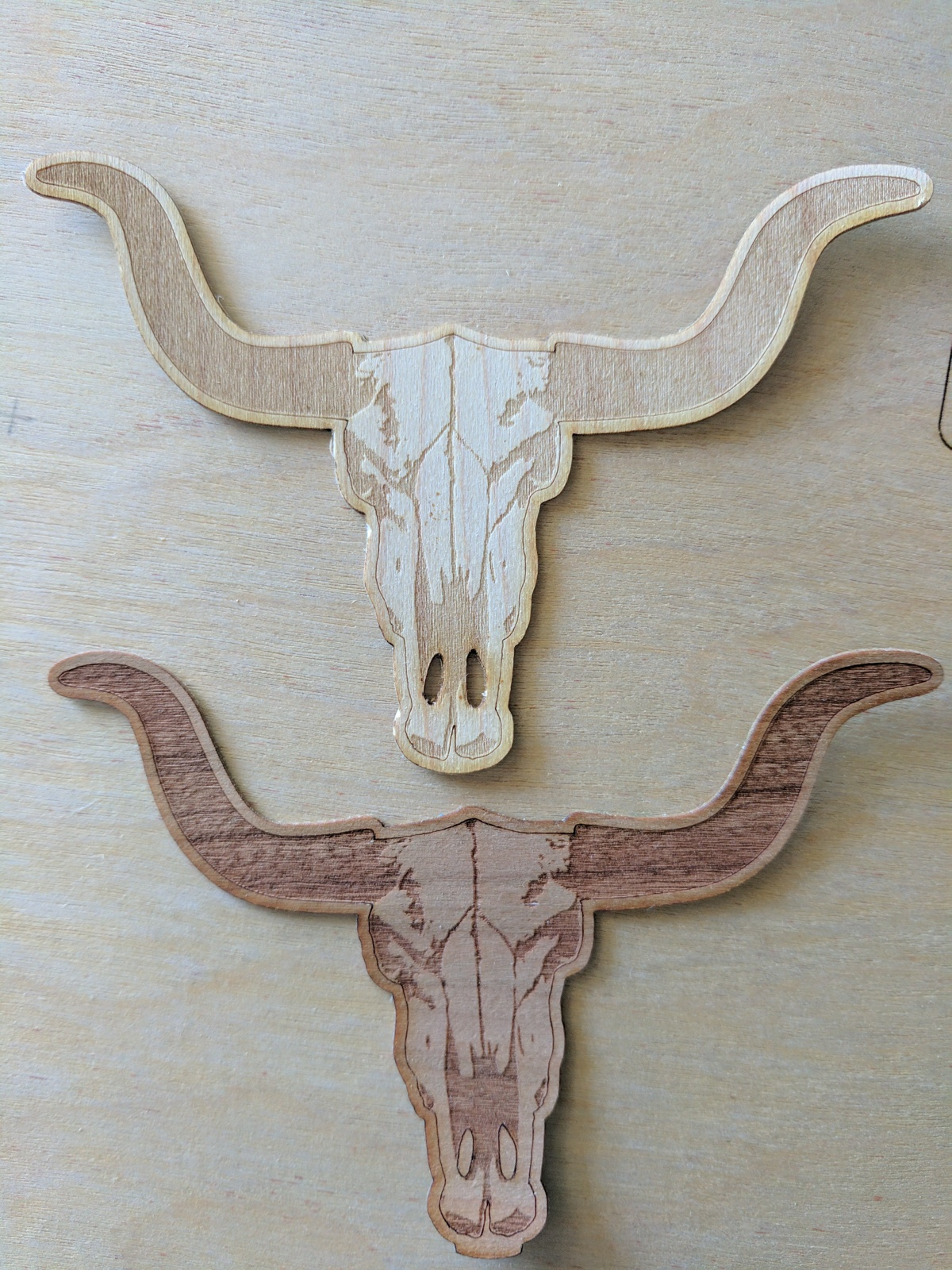 longhorn stickers.jpg