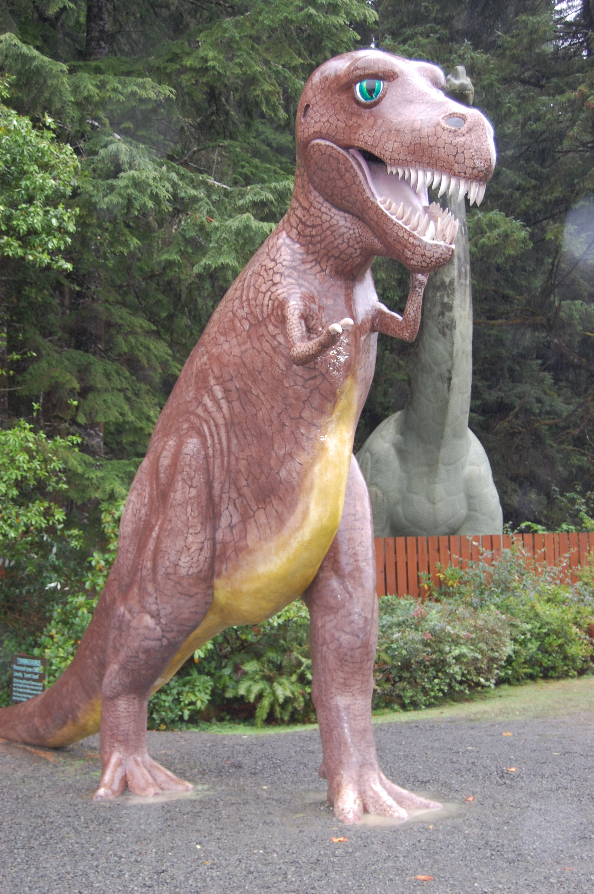 PREHISTORIC GARDENS - Port Orford - What to do in Southern Oregon - Family - Kids