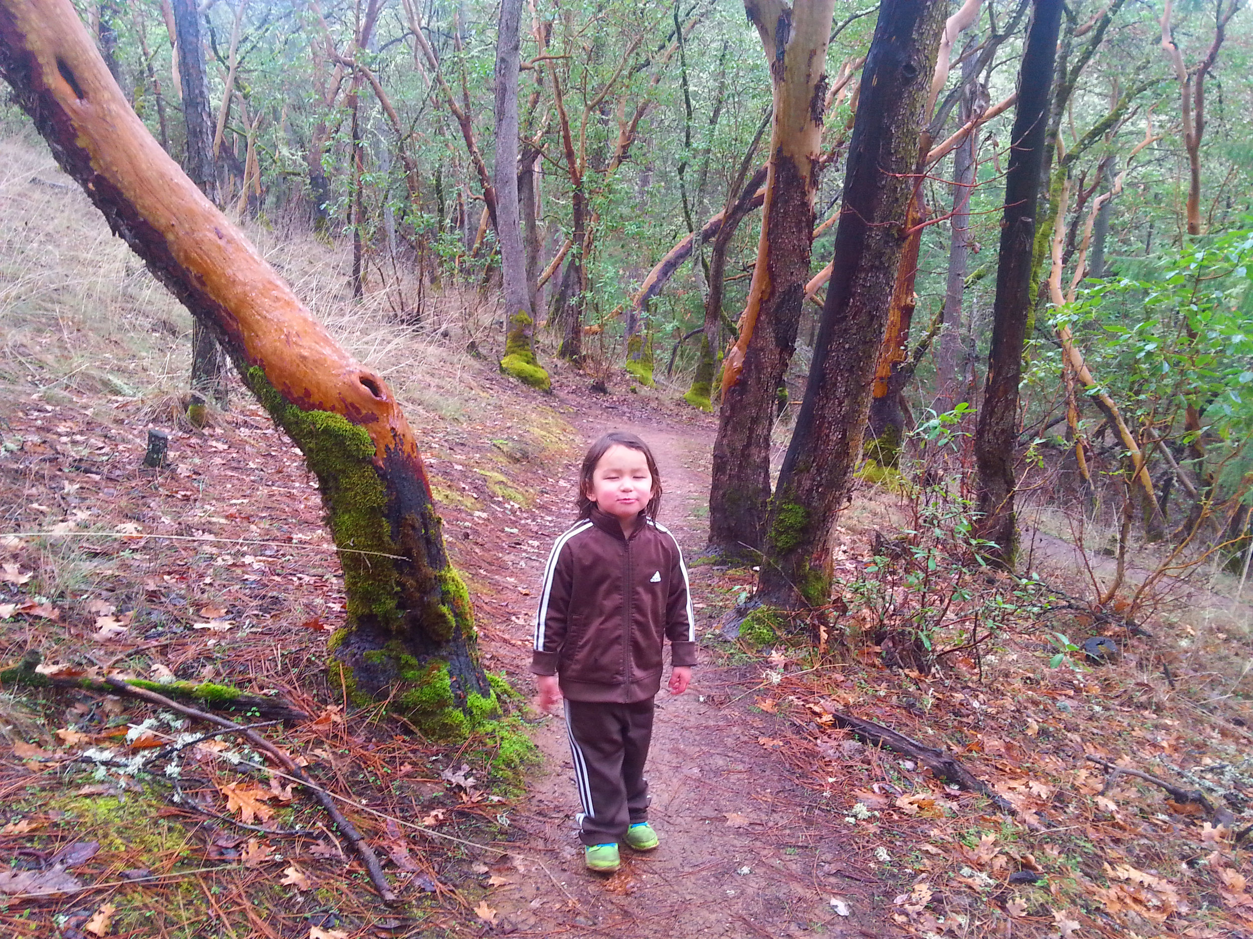 Beekman Trail, Jacksonville, Oregon - Rogue Valley - Jackson County - Southern Oregon (1).jpg
