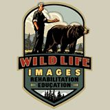 WILDLIFE IMAGES - Grants Pass - What to do in Southern Oregon - Things to do - Kids - Family