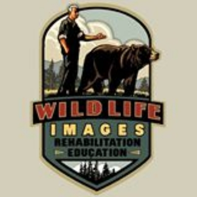 WILDLIFE IMAGES - What to do in Southern Oregon Birhtday Parties - Things to do in Grants Pass