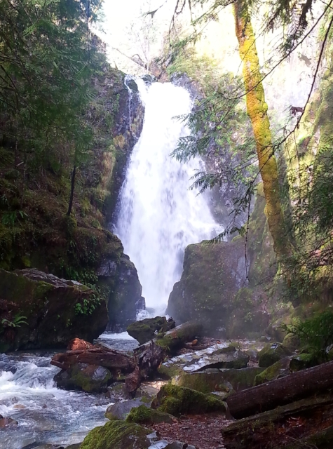 SUSAN CREEK FALLS - What to do in Southern Oregon - Things to do in Roseburg - Waterfalls - Hiking - Kid-Friendly