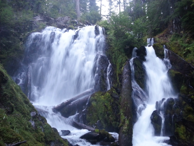 NATIONAL CREEK FALLS - What to do inSouthern Oregon - Things to do - Waterfalls - Hiking - Kid-Friendly