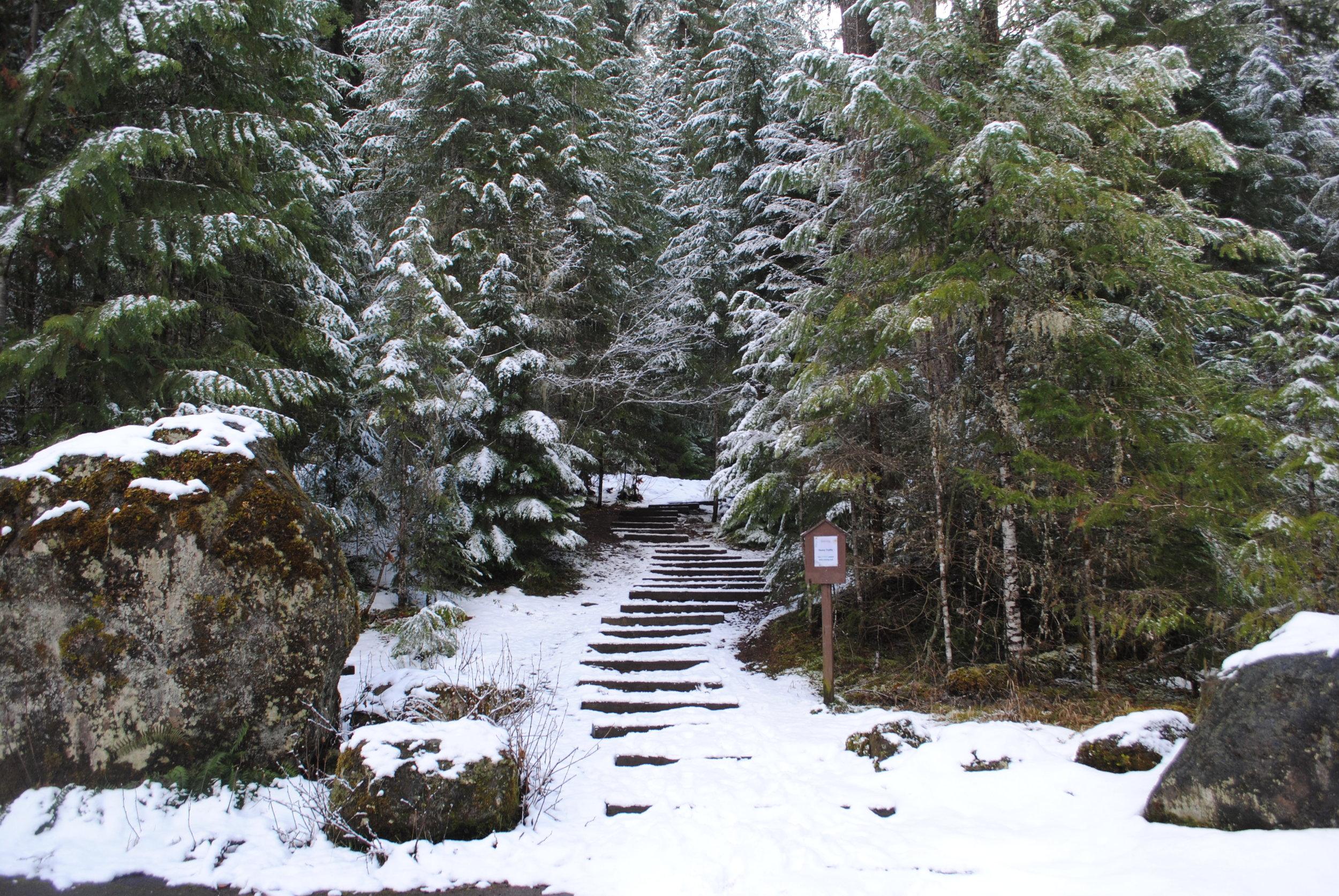 WATSON FALLS - What to do in Southern Oregon - Things to do in Roseburg - Diamond Lake - Waterfalls
