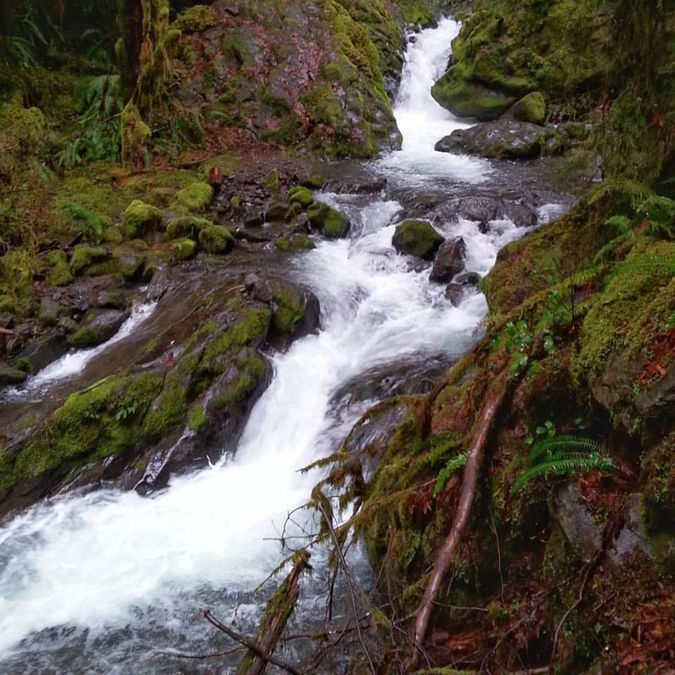 FALL CREEK FALLS - What to do in Southern Oregon - Things to do - Waterfalls 4.jpg