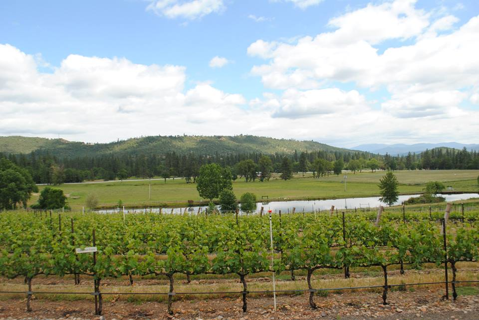 ROAM THE ROGUE - Seven Wineries, One Day - What to do in Southern Oregon - Things to do - Wine Tasting  - Upper Rogue Wine Trail - Kriselle Cellars