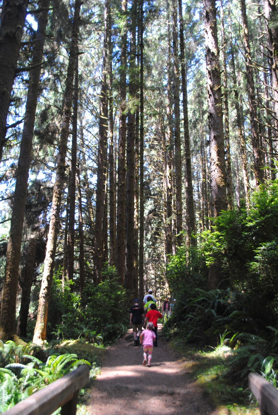 Gold Bluffs Beach - Orick, California - Del Norte County - Redwoods - Northern California - What to do in Southern Oregon - Camping - Kid-Friendly 22.jpg