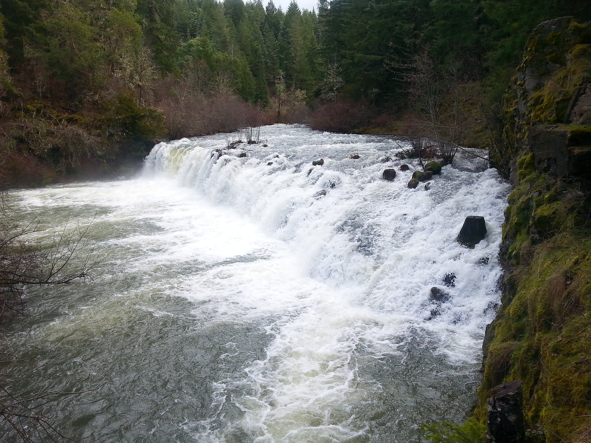 BUTTE FALLS - Waterfalls - What to do in Southern Oregon - Things to do - Hikes - Kids