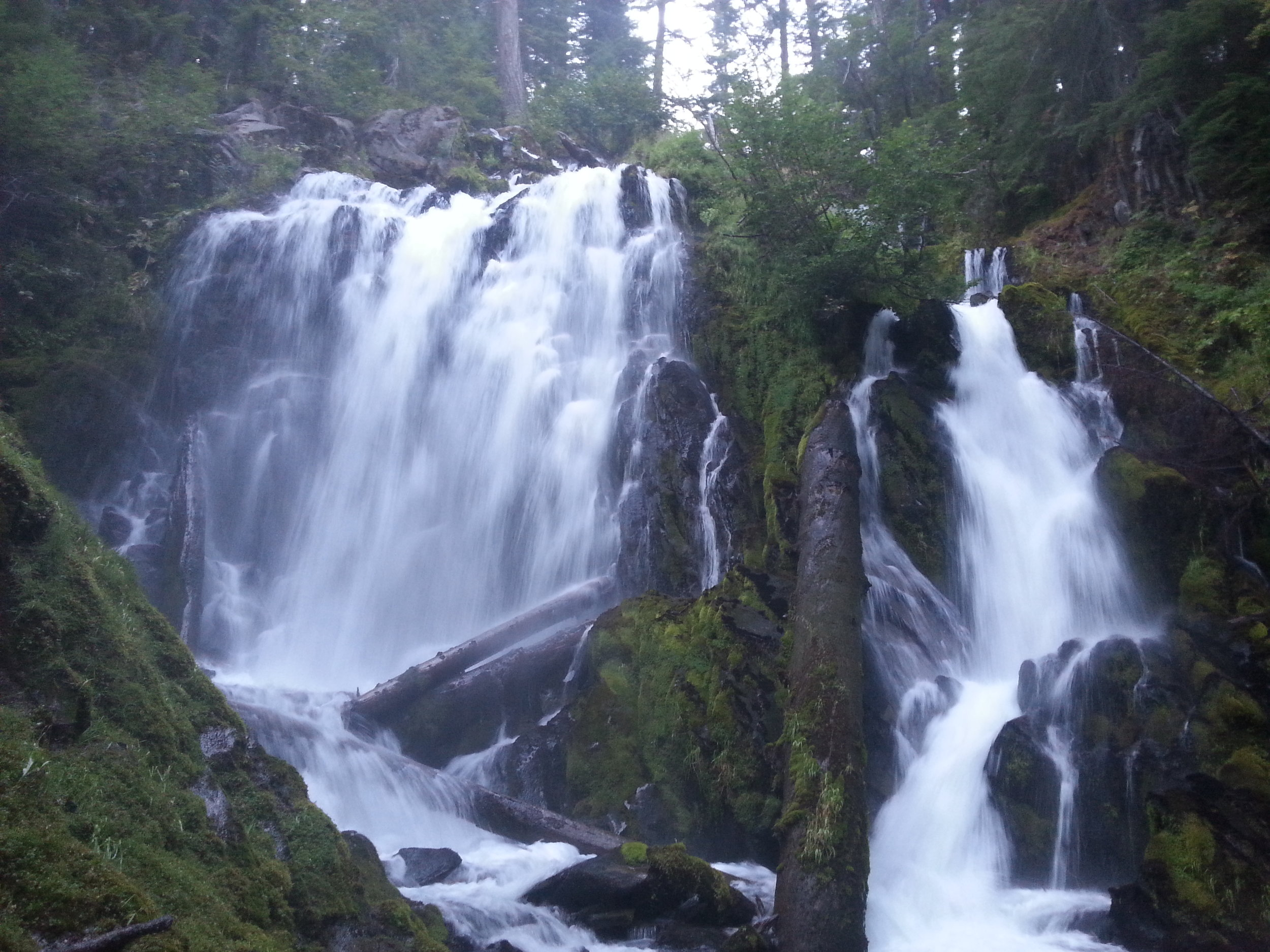 NATIONAL CREEK FALLS - Waterfalls - What to do in Southern Oregon - Things to do - Hikes - Kids