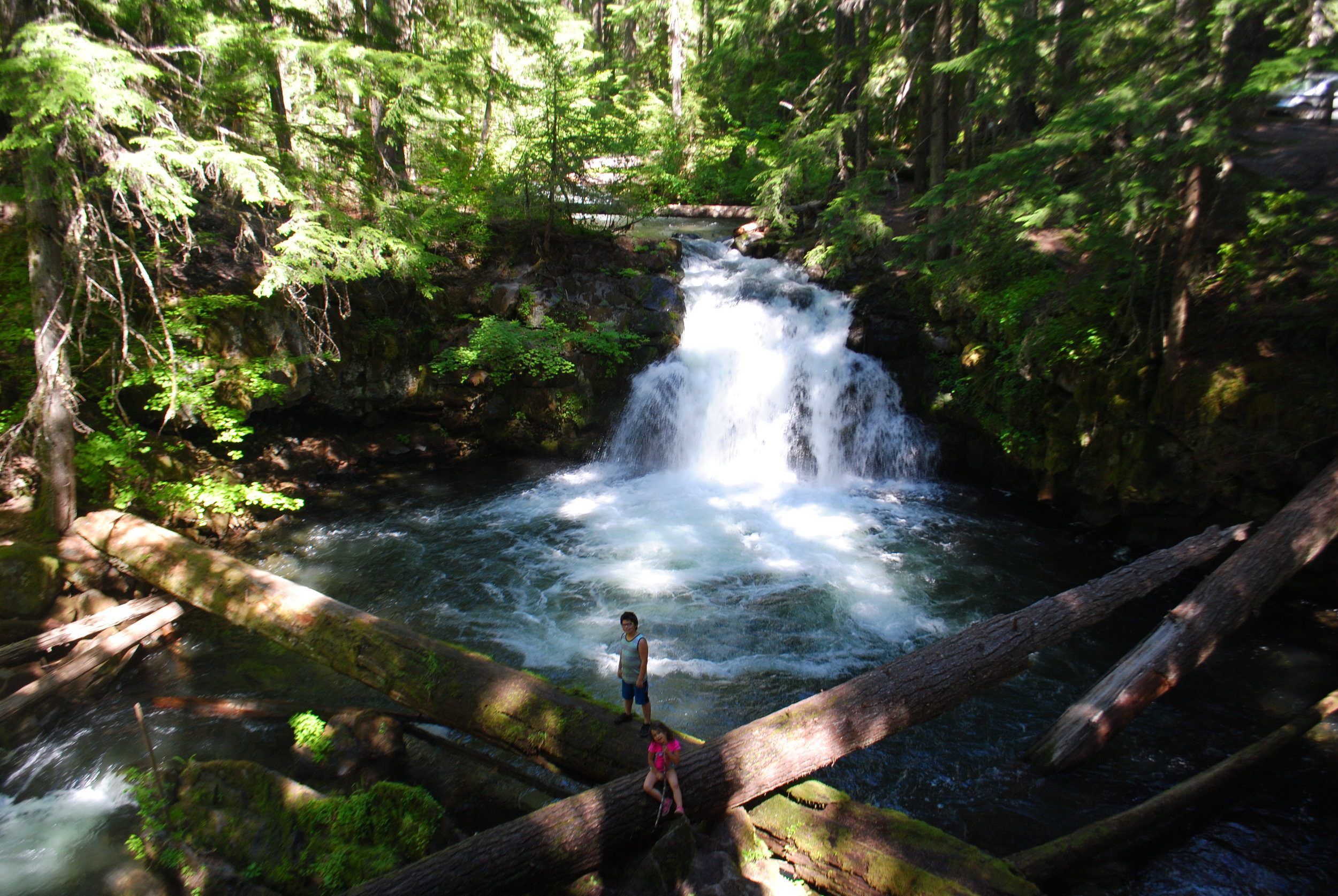 FOUR WATERFALLS, ONE DAY - HIKING ADVENTURES WITH KIDS - What to do in Southern Oregon - Things to do - Douglas County - Whitehorse Falls