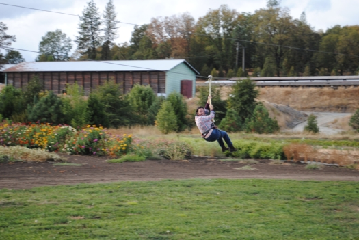 Fort Vannoy Farms zip line  -  17 SOUTHERN OREGON ADVENTURES YOU DO NOT WANT TO MISS - What to do in Southern Oregon - Kids