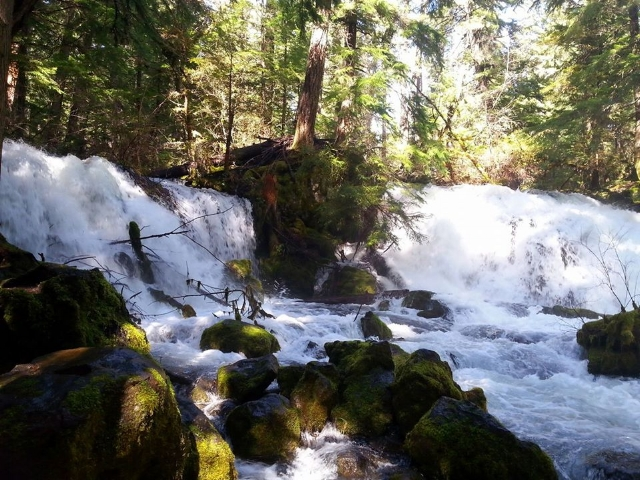 Pearsony Falls - Waterfalls - What to do in Southern Oregon - Things to do - Outdoor Adventures - Kids