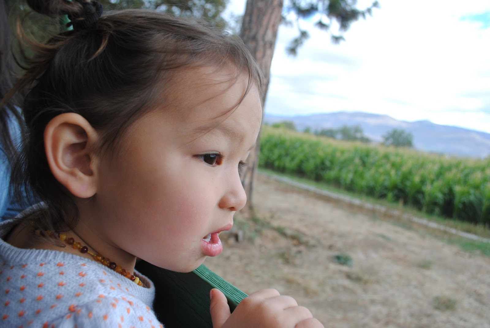 10 October Pumpkin Patch with Moon Family (63).JPG