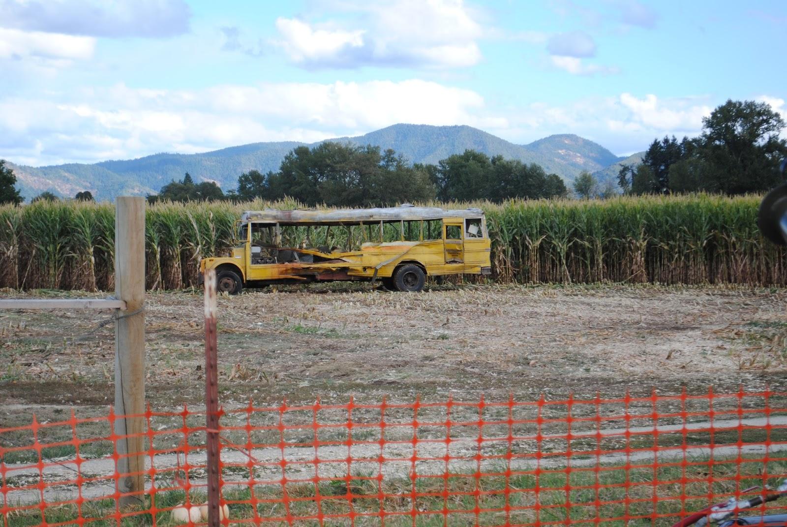 Fort Vannoy Farms Harvest Festival - Grants Pass, Oregon - Josephine County - Rogue Valley - Southern Oregon - Fall - Autumn - Pumpkin Patch - Corn Maze - Hayrides (162).JPG