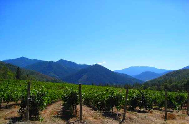 Wine Tasting - What to do in Southern Oregon - Uncorked - Applegate Valley