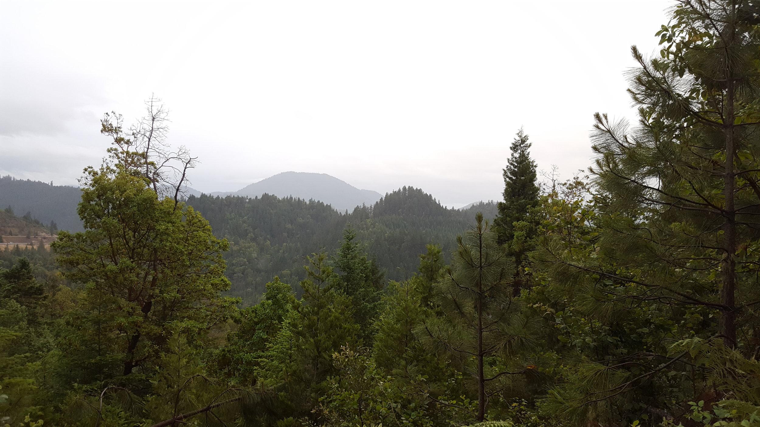 Road to London Peak Trail