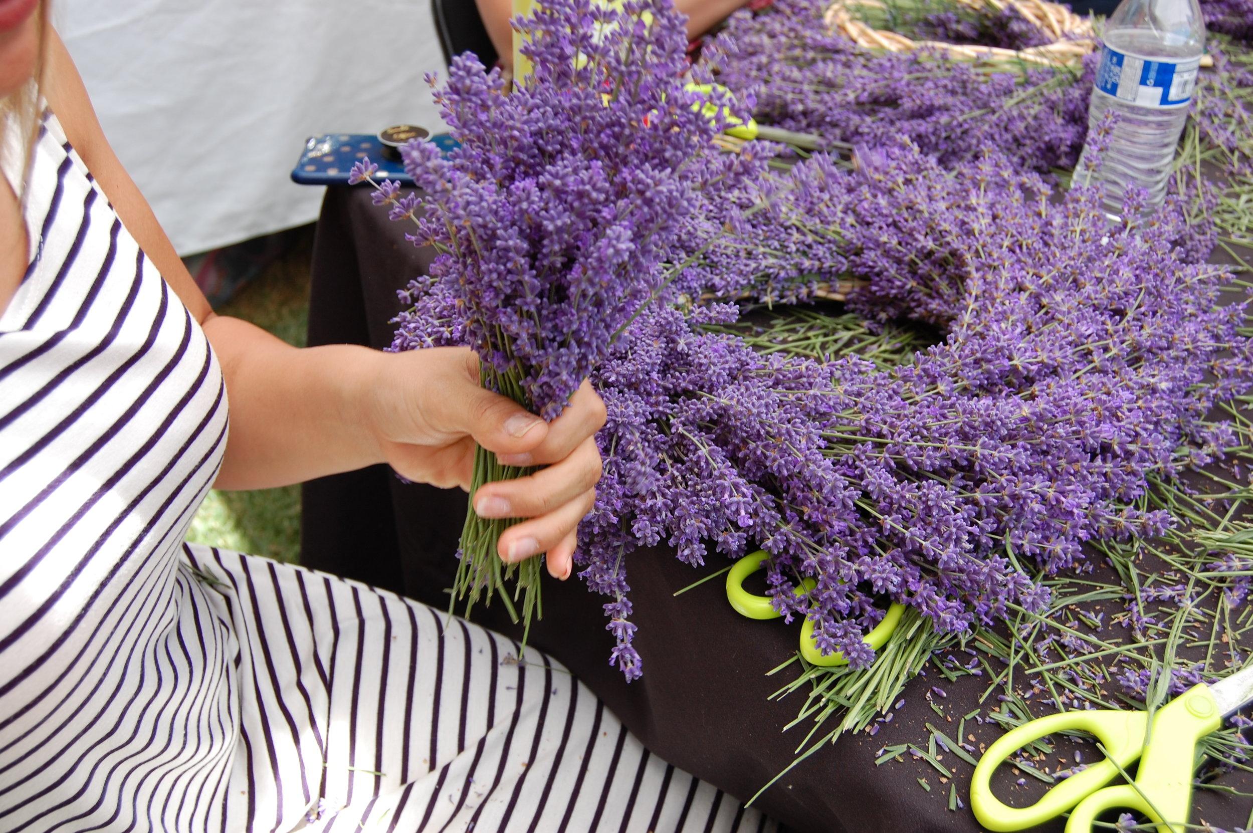 THE ENGLISH LAVENDER FARM - SOUTHERN OREGON LAVENDER FESTIVAL