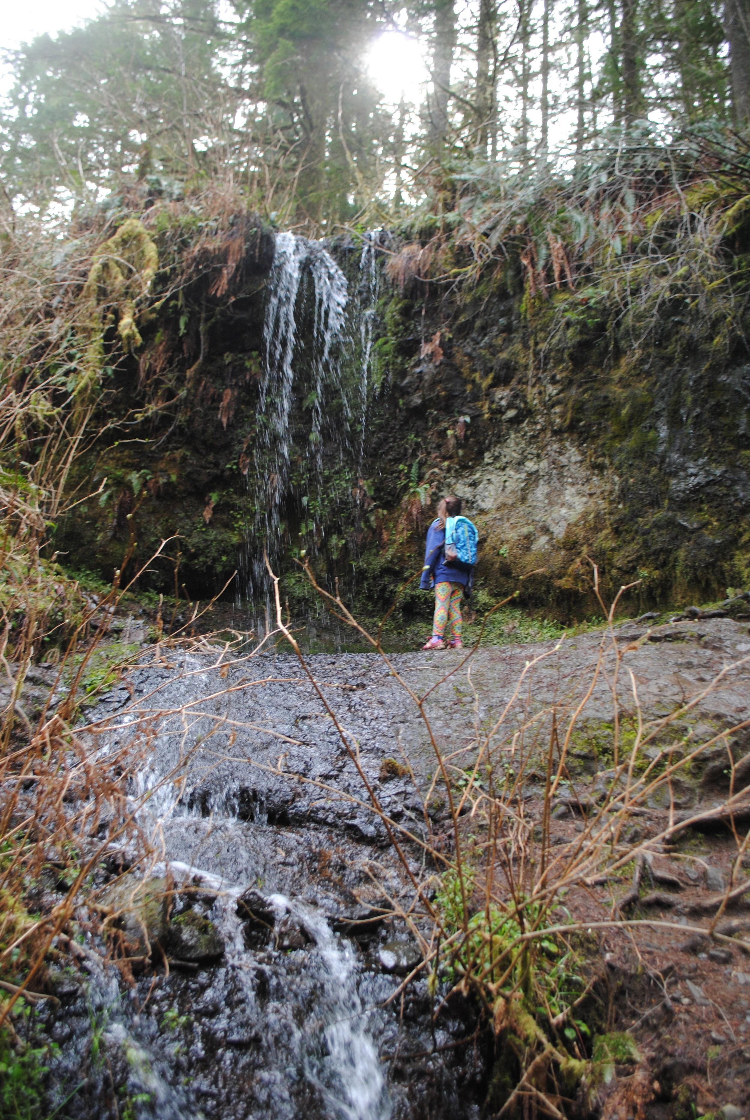 SILVER FALLS STATE PARK - Upper North Falls - Oregon