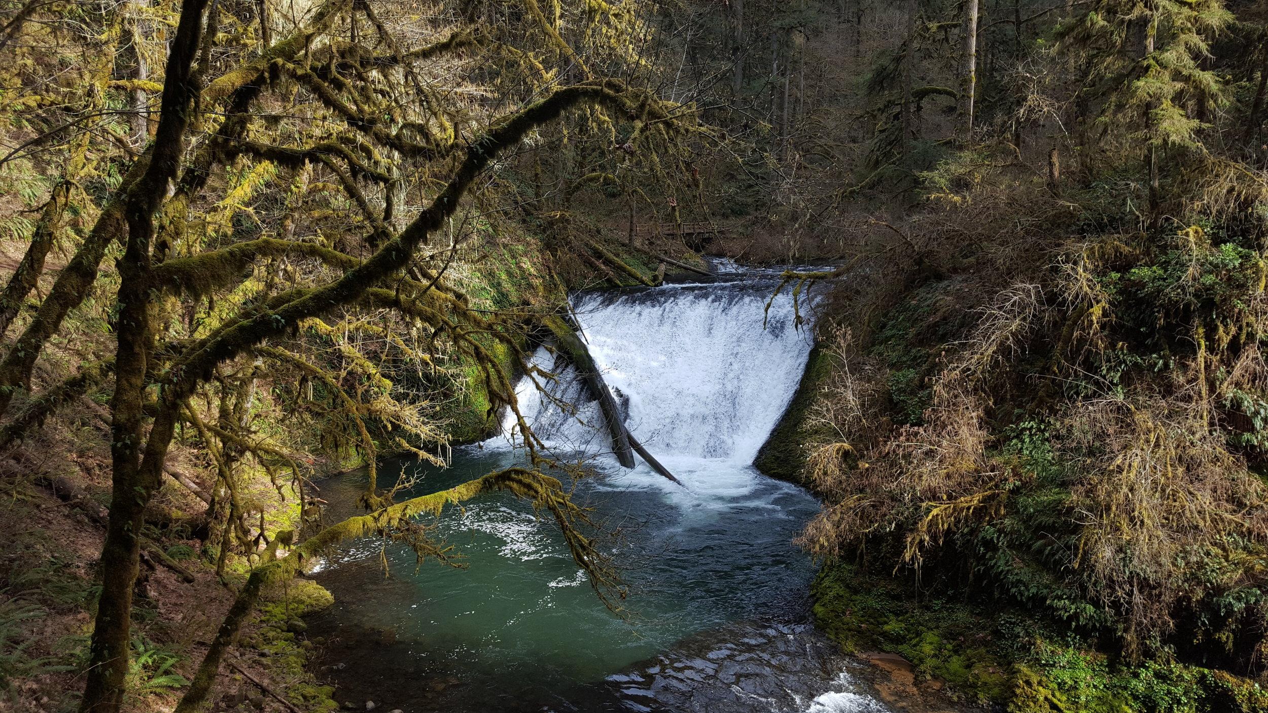 SILVER FALLS STATE PARK - Lower North Falls - Oregon