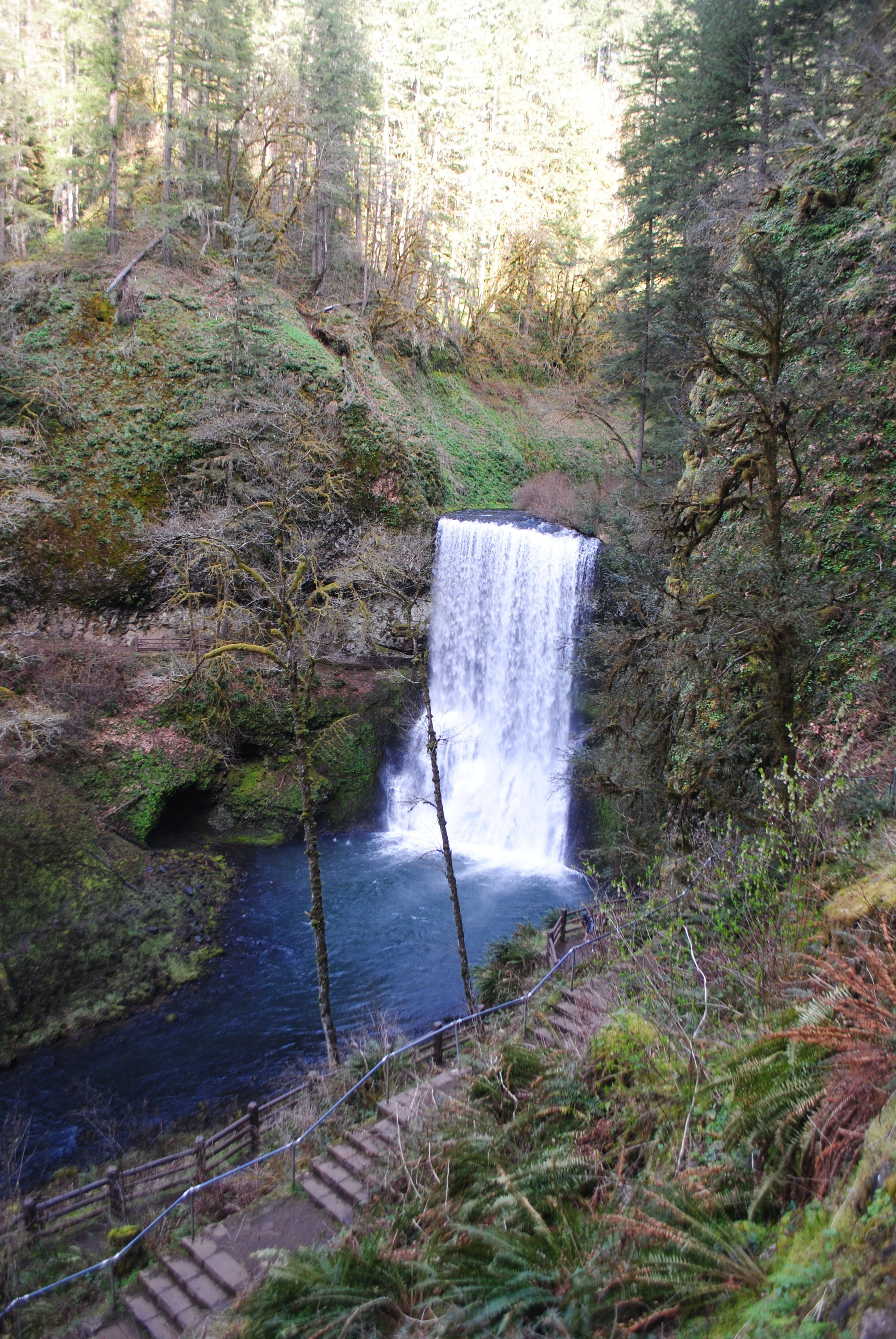 SILVER FALLS STATE PARK - Lower South Falls - Oregon
