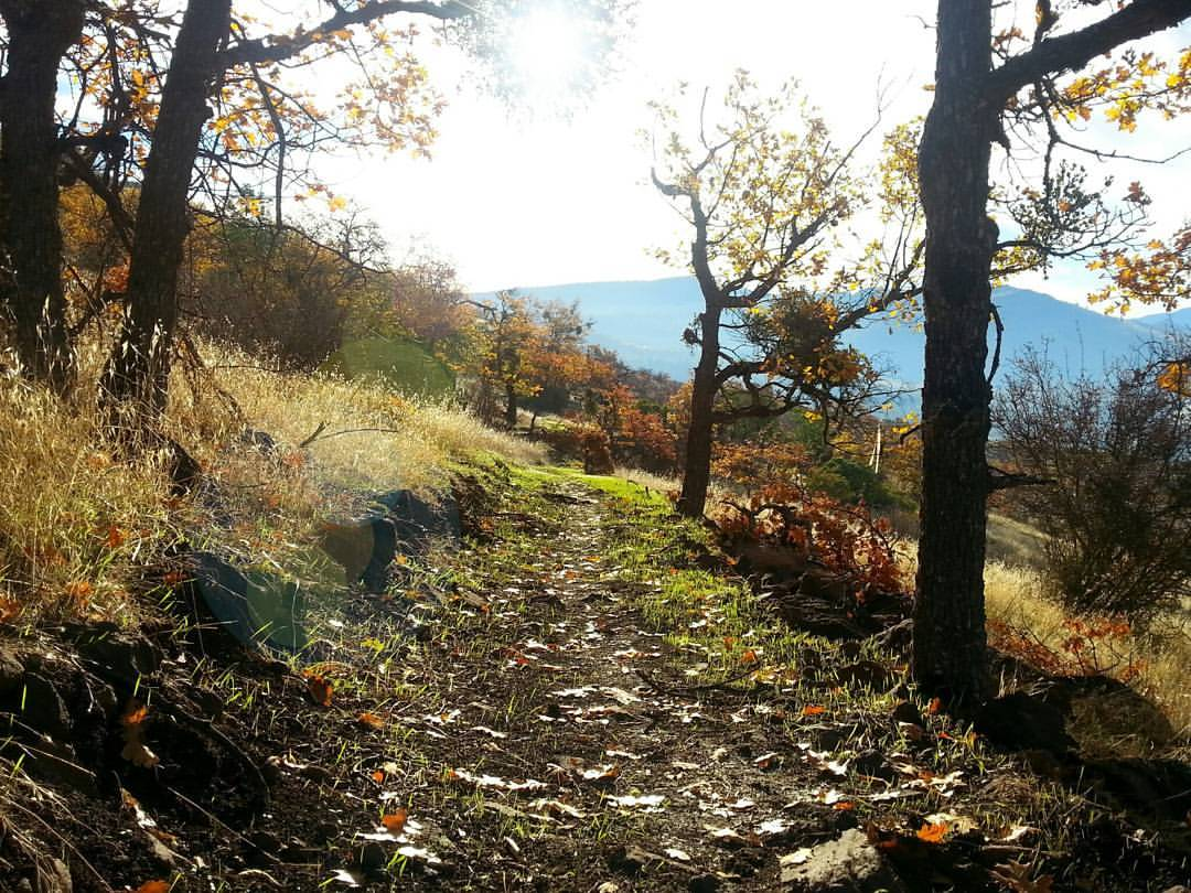 Roxy Ann - Medford - Hiking - What to do in Southern Oregon