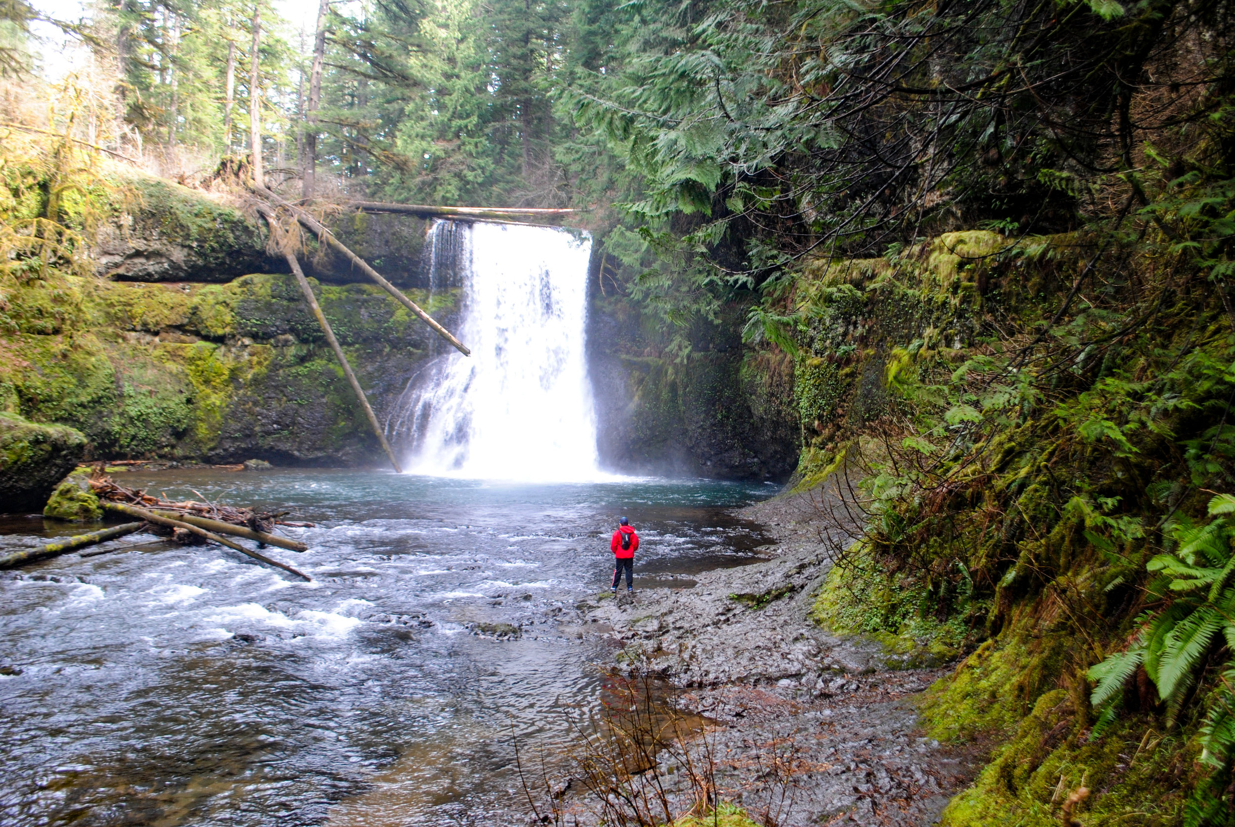 SILVER FALLS STATE PARK OREGON - Silver Falls State Parks - Trail of Ten Falls has been on our family bucket list for years. We finally were able to make it there and it wowed us beyond our expectations. To begin with…