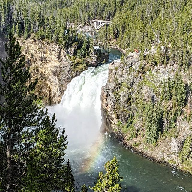 Yellowstone Upper Falls @yellowstonenps is just up the road from Artist Point and you get this gorgeous view without even hiking.  #PierceFamilyAdventures #Yellowstonenationalpark #Yellowstone #visittheUS #visitWyoming #travelwyoming #thatswy #UpperYosemiteFalls #waterfalls #travelbloggers #familytravel #adventuremore #goadventuretogether #goparks #familytravelbloggers #seeAmerica #radparks #bestlife #USviews #rainbow #natureismychurch #nationalparkgeek #nationalparks #takeyourkidseverywhere #americathebeautiful
