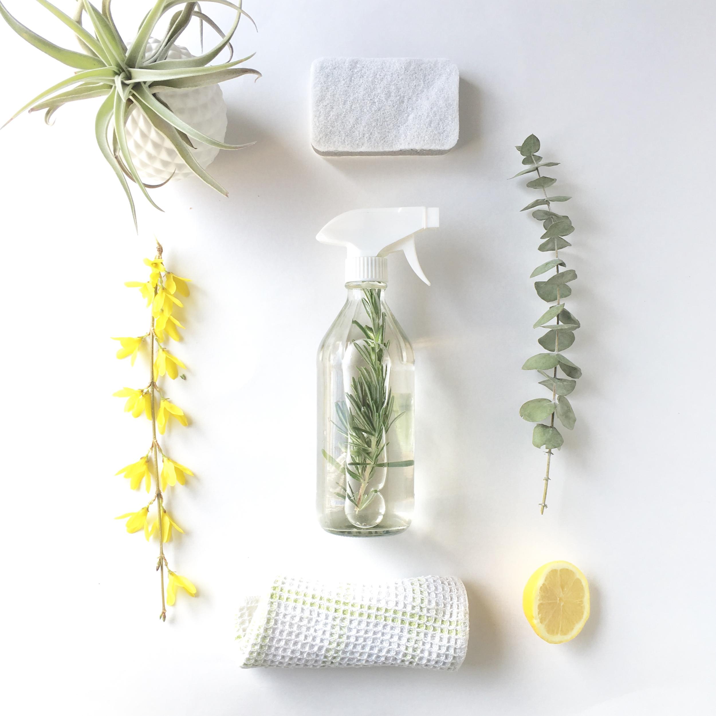 cleaning-lemon-euc.png