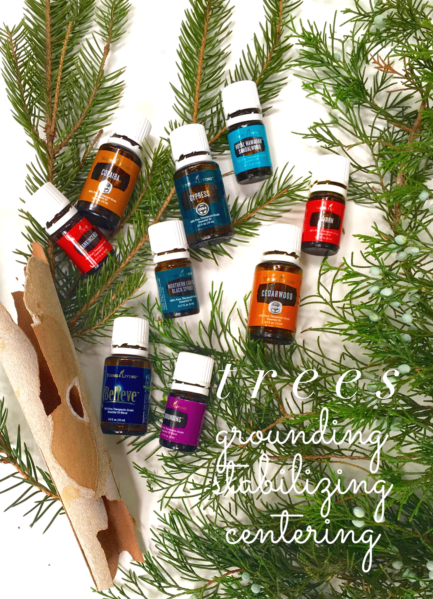 Frankincense, Copaiba, Cypress, Royal Hawaiian Sandalwood, Myrrh, Northern Lights Black Spruce, and Cedarwood are all wood oils, and Believe and Grounding are blends of several wood oils.