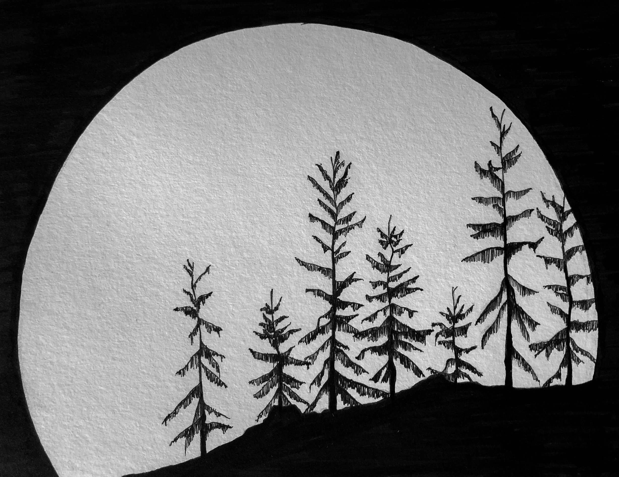 "pen and ink ""trees viewing the moon"""