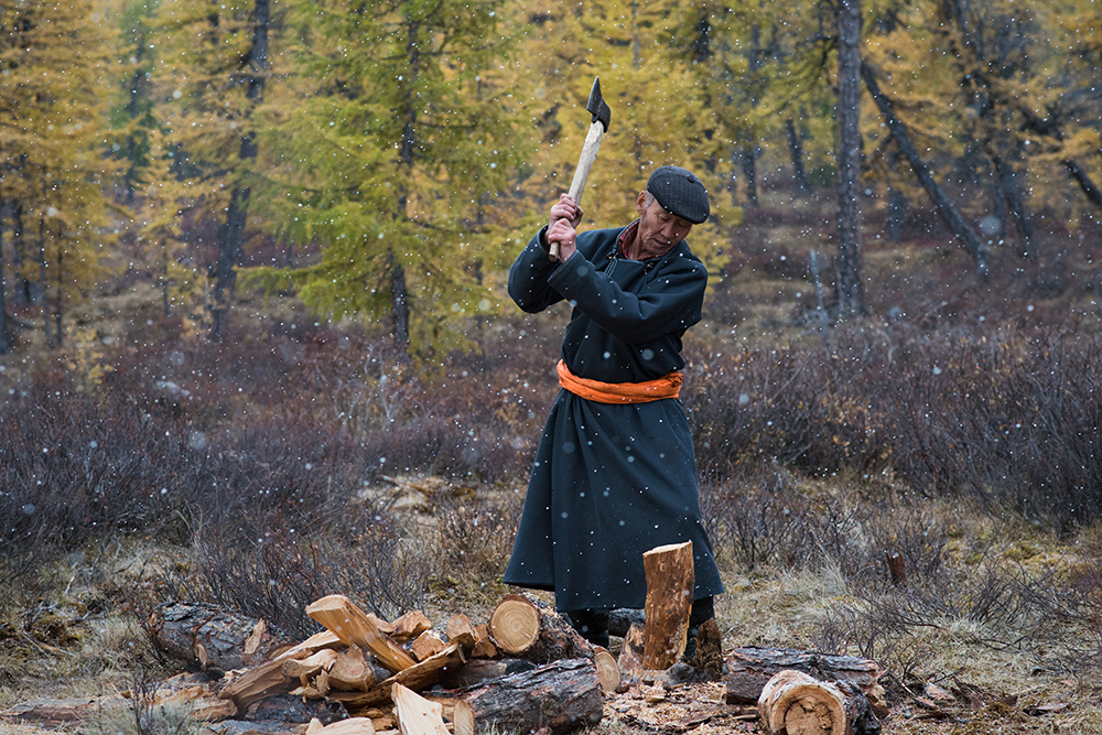Ganbat (57), an elder of the Tsaatan community in East Taiga, Mongolia, prepares firewood for the night on September 19, 2015.