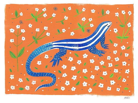 lizard-b.jpg