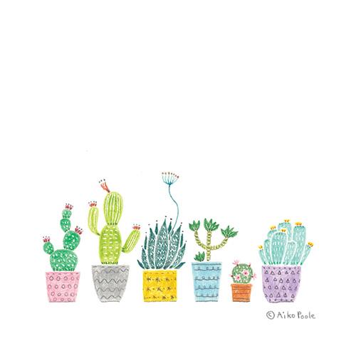 cactus-b.jpg