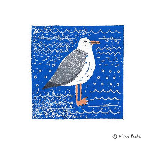 seagull-b.jpg