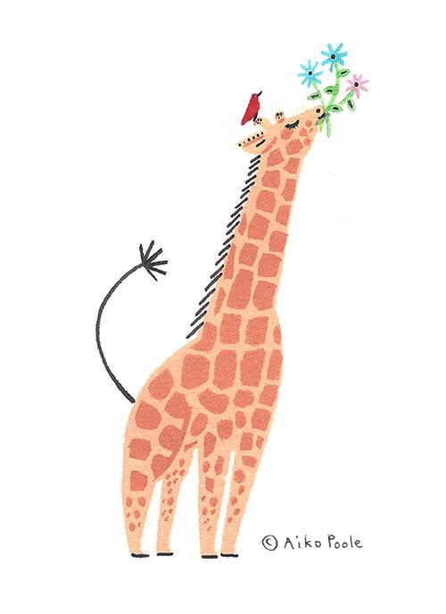giraffe-b.jpg