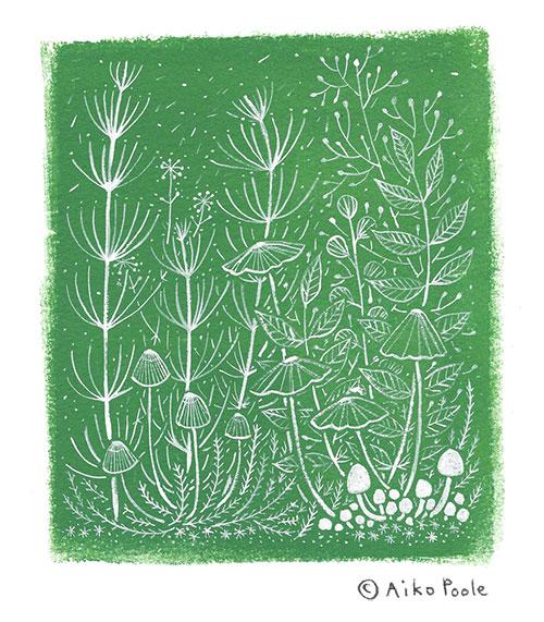 fern&mushroom-b.jpg