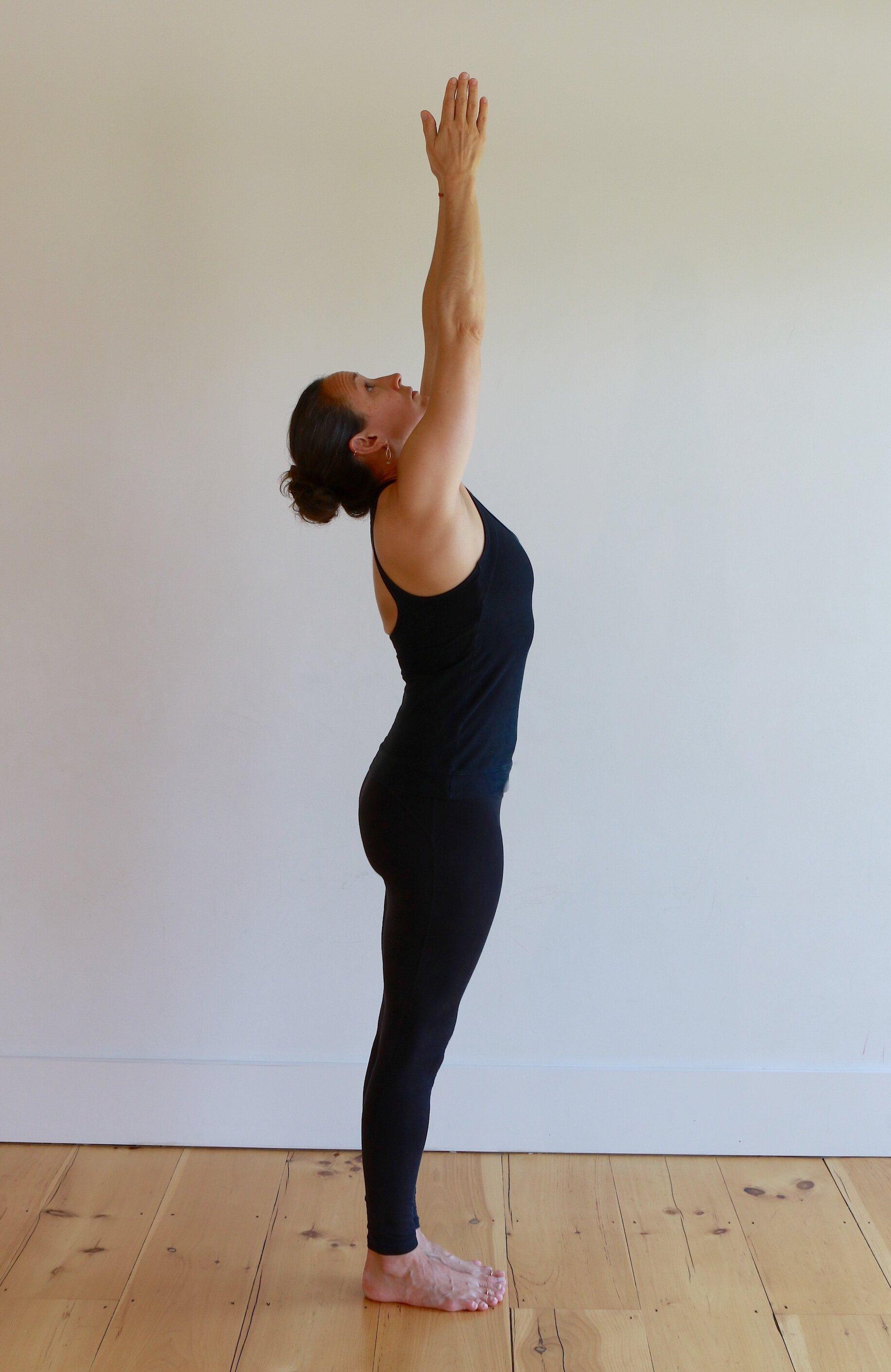 Surya Namaskara A & B   Sun Salutations   Yoga East