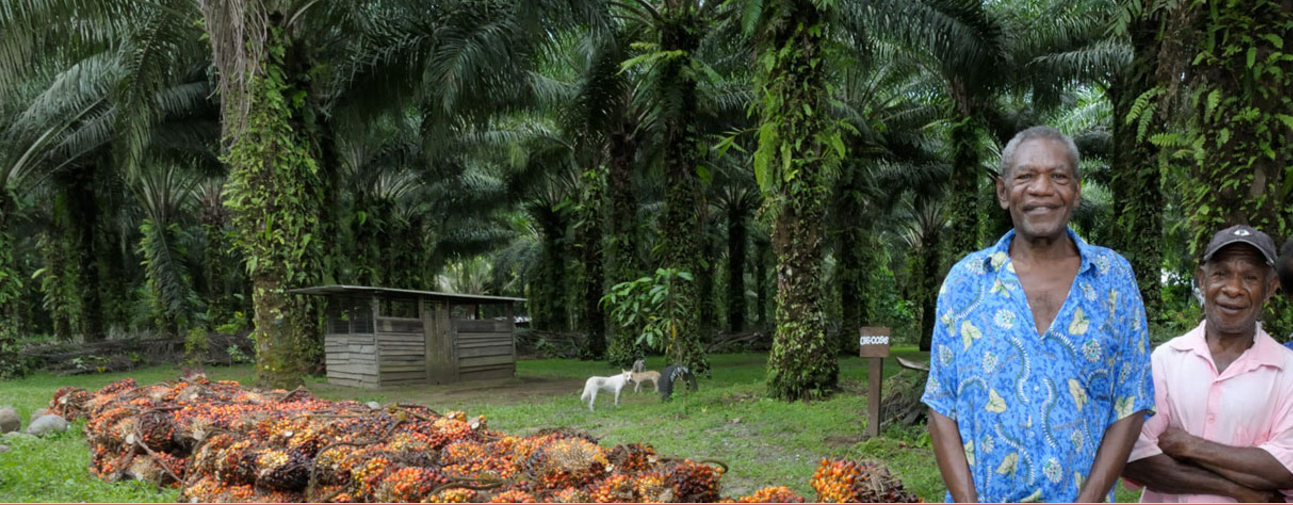 photo from rspo.org